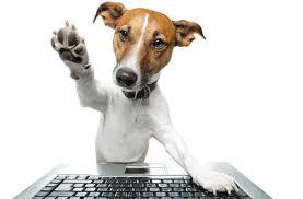 Amis passionnés des chiens, Bonjour ! dans Bienvenue à tous images2