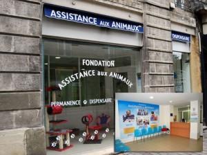 DISPENSAIRES ANIMAUX dans Actualité dispensaire-animaux-300x224