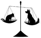 Les animaux domestiques ont des droits... ça avance... dans Actualité la-loi-et-les-animaux