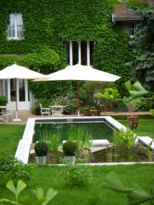 Une piscine pour vos loulous et vous dans Actualité piscine-contemporaine-225x300