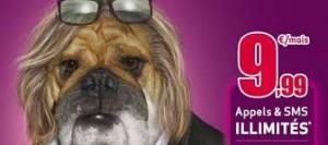 Pubs de chiens et le loto... dans Les chiens et la publicité imagesca2rp1bo-300x133