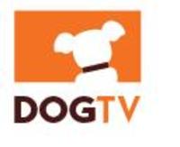 Une chaîne de télé pour les chiens (et leur maître)... A voir dans Actualité 5859871-4ff5483ds1